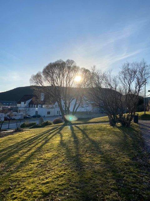 VÅRSTEMNING: Namsos var varmest mandag, med 17 grader. Dette bildet er tatt fra Kirkehaugen i Namsos på lørdag.