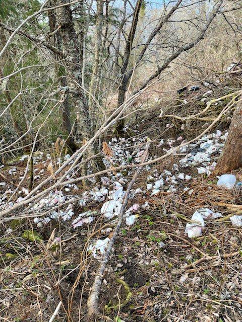 SØPPEL: Slik ser det ut på tur ned til Liss Bjørkneset på Kolvereid. Det flyter av søppel i turområdet mange benytter seg av.