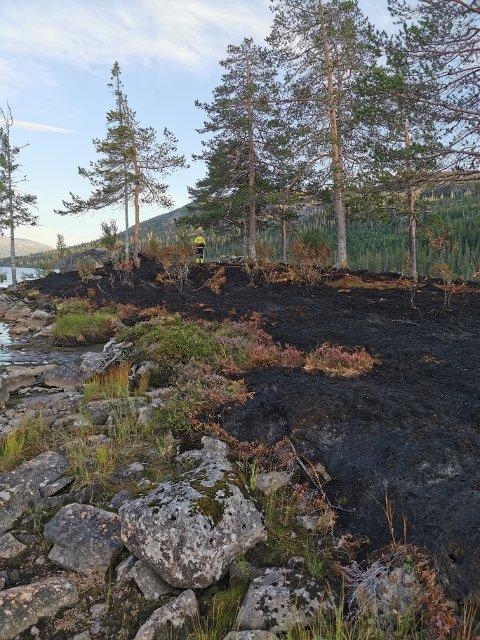 ETT MÅL: Brannvesenet anslår at omkring 1.000 kvadratmeter utmark er svidd av etter at det ble tent bål ved Mellingsvatnet i Namsskogan.