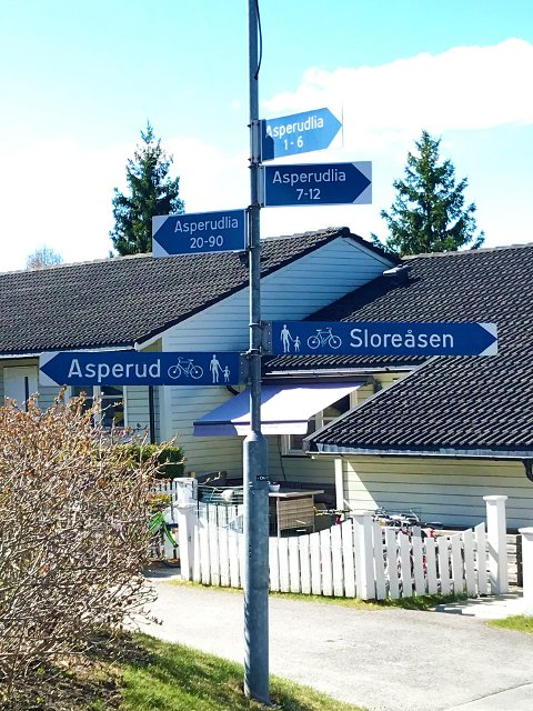 Gamle Leerdal Aasen ble innlemmet i Holmlia-planen i 1976