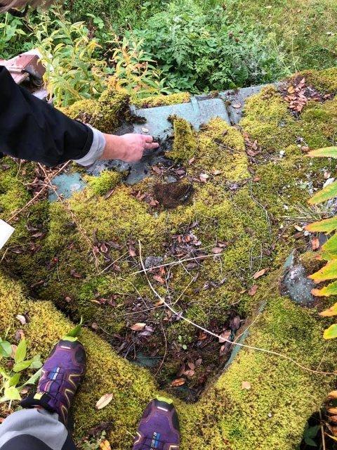 MYSTISK FUNN: Tanita Susann Lien kom plutselig over gamle murrester og en luke rett ved eiendommen sin i Tromsø. Luka har inskripsjoner på tysk.