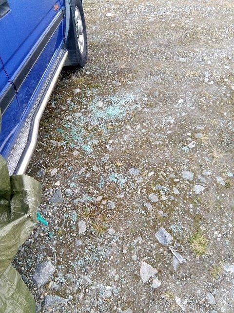MYE GLASS: Spesielt hundeiere må være oppmerksomme når de parkerer på Snarbyeidet.