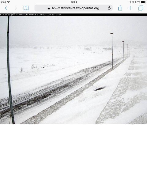 Slik ser det ut på Filefjell i formiddag. Bildet er hentet fra et av Statens vegvesens vegkameraer ved E16.
