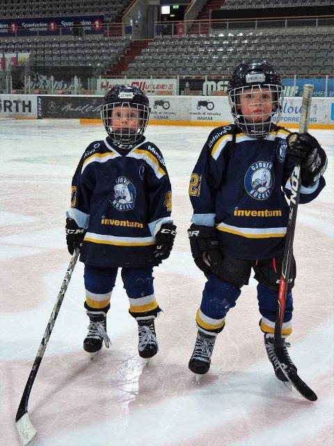 Det gror godt i Gjøvik Hockey.