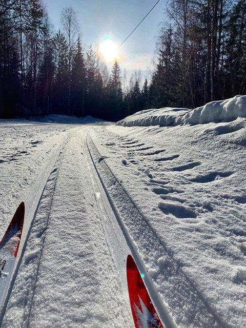 BRA FOR SKIFORHOLDENE: Selv om det ikke blir veldig mye sol i helgen, kommer det såpass med snø at skiløypene vil bli bedre å gå i igjen.