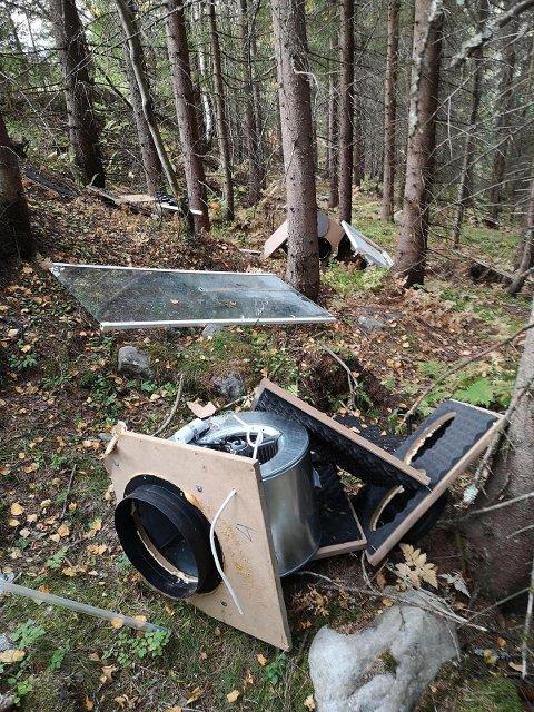 UTRIVELIG: Slik så det ut i skogen ved Tobru.