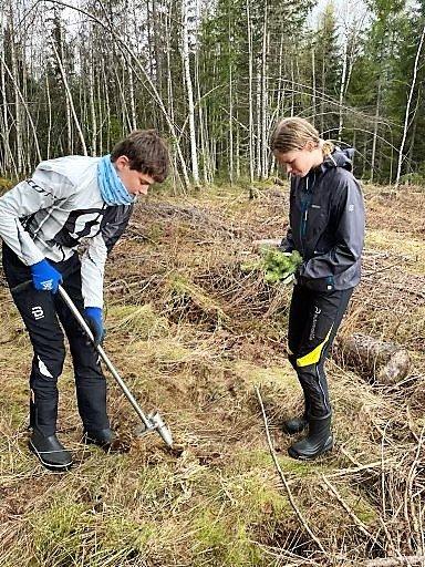 JOBB OG TRENING: Malin og Mathias Hoelsveen har jobbet i skogen mellom treningsøktene i sommer.
