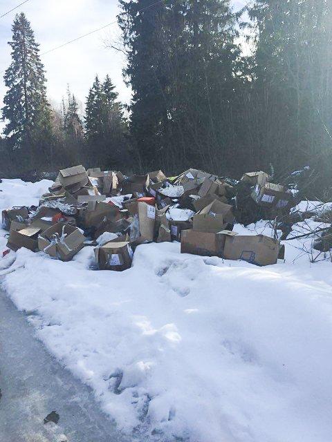 Søppel: Nytt søppelberg på Sagatun. FOTO: Bernt Arild Hansen