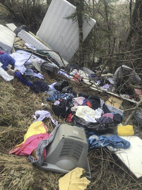 SØPPELBERG: Madrasser, dyner, puter, sengetøy og klær er kastet nord for innkjøringen til Fjell. Ski kommuneskoger anmelder alle slike saker. BEGGE FOTO: BERNT A. HANSEN