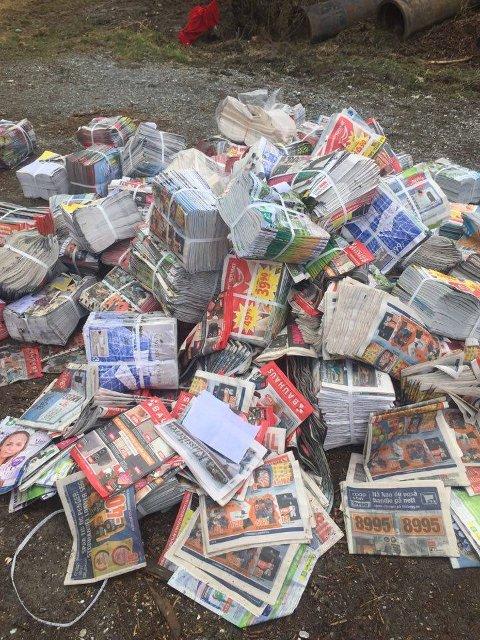 SØPPELHAUG: Dette er bare deler av bunkene med reklame som ble dumpet ved Vevelstadveien. FOTO: BERNT A. HANSEN