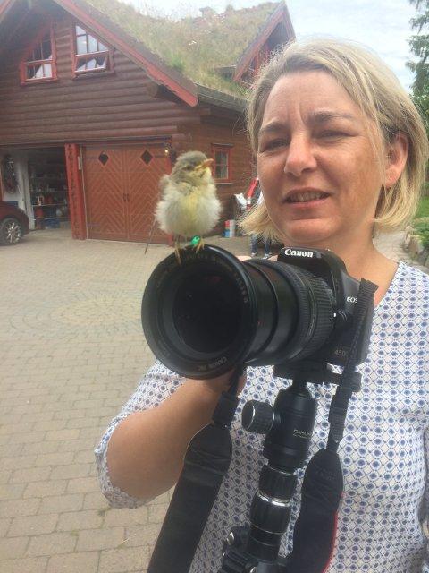 Hobbyfotograf: Ann Kristin Hynne Green har tatt det flotte bildet fra Rakke. Her avbildet sammen med en liten nysgjerrig fugleunge som hadde falt ut av redet (og overlevd).