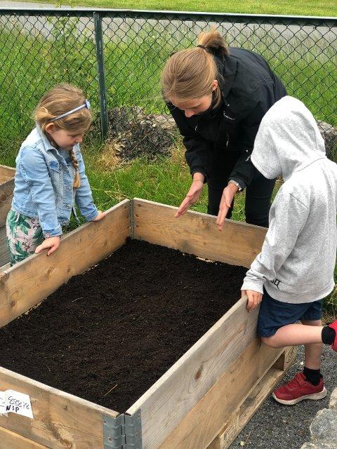 LÆRERIKT: Molly og Henrik blir forklart av Karoline at det må være god avstand mellom plantene når de sås. Etter sommeren håper mange barn at skolehagene har fått stå i fred.
