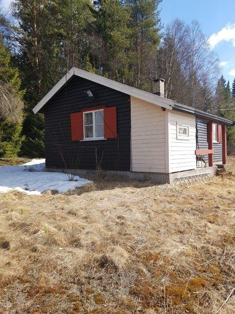 SKOG: Denne hytta er til salgs til en ganske stiv pris.