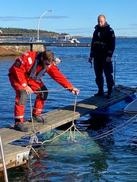 Aleksander Grønli ved Kystvakten sjekker en samleteine mens politibetjent Kristoffer Lund følger med. Denne teinen inneholdt ikke ulovlig fanget hummer.