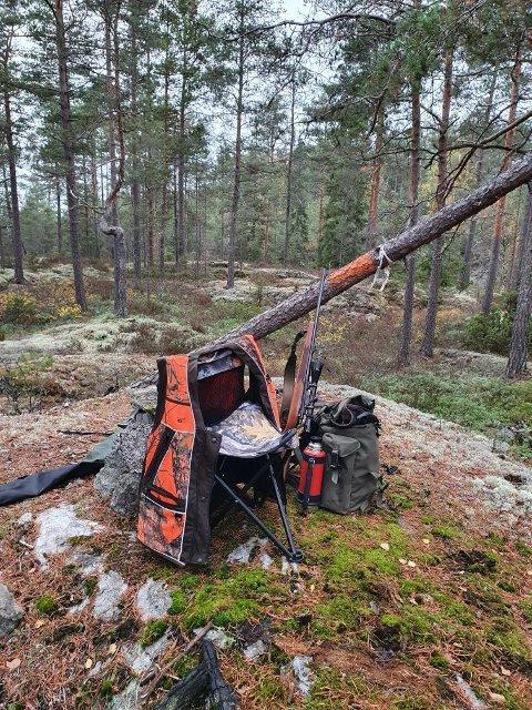 SLÅTTÅSEN: Stemningsfulle bilder fra jakting med Slåttåsen elglag.