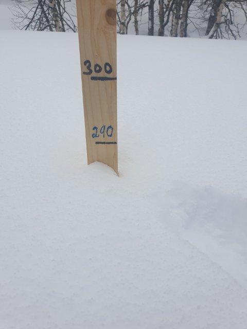 Snørik vår: Snømåleren hos Mads Kroken i Fiplingdal viste 2,80 meter på søndag.