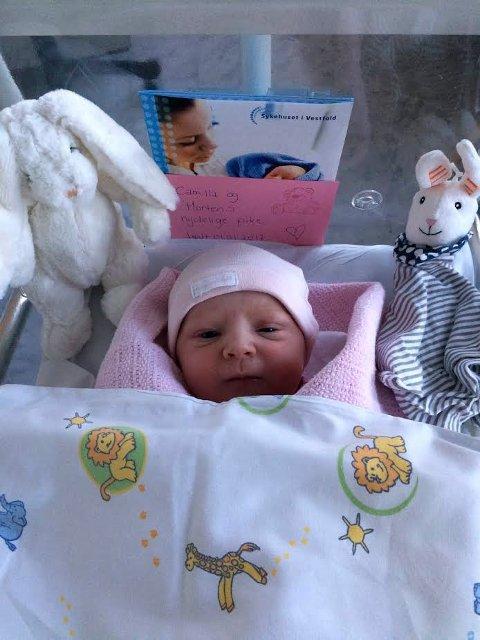 NESTEN NYTTÅRSBARN i NYE SANDEFJORD: Emine Johannessen-Prag fra Melsomvik ble født kl. 08:11 på Sykehuset i Vestfold.
