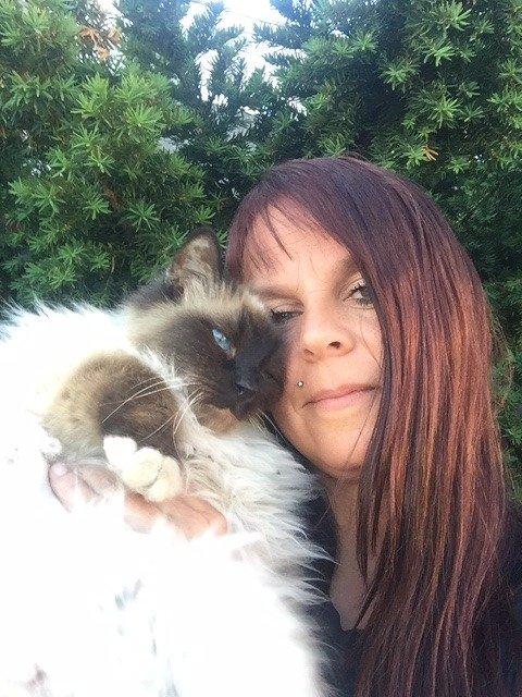 """TAKKNEMLIG: Matmor Svanhild Wien er takknemlig for at en ærlig """"ny"""" eier tok kontakt da noe skurret. Han skal ha kommet over Belissimo, som er av katterasen hellig birma, i en Finn-annonse."""