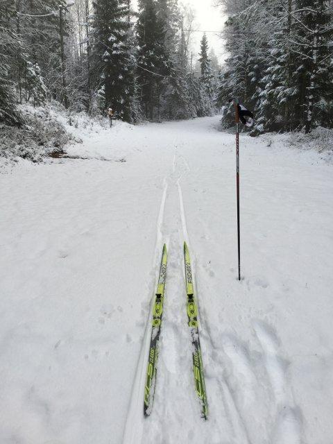 SKIFØRE: Slik så det ut da Anne Nguyen testet skiene etter snøfallet tirsdag.