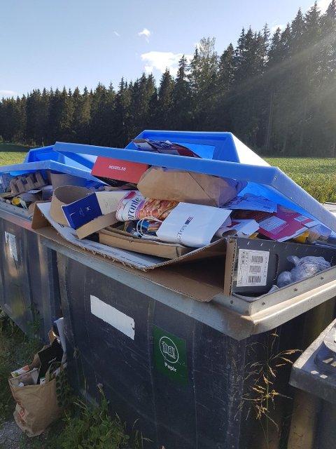 OVERFYLT: Arild Hansen frykter søpla vil havne i skogen.