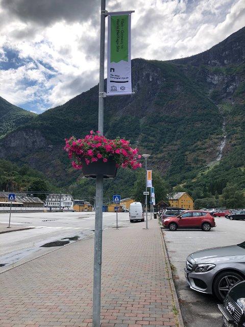 BLOMAR: 14 slike blomekassar er sette opp på Aurlandsvangen og i sentrumsområdet i Flåm. Kommunen har fått pengar frå Fylkeskommunen til å utvikla sentrumsområda.