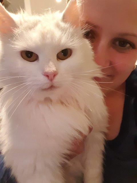 Lise Mauland er glad for at katten Pusi har kommet hjem til familien igjen etter elleve måneder på rømmen.