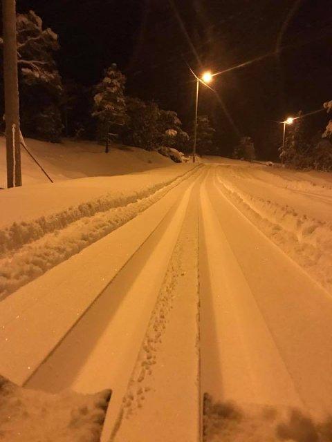 Nydelege skispor i kveldslyset på Bjødnabu. Løypenettet er utvida heilt til Bønardalen i Årdal. (Foto: Hjelmeland Røde Kors)
