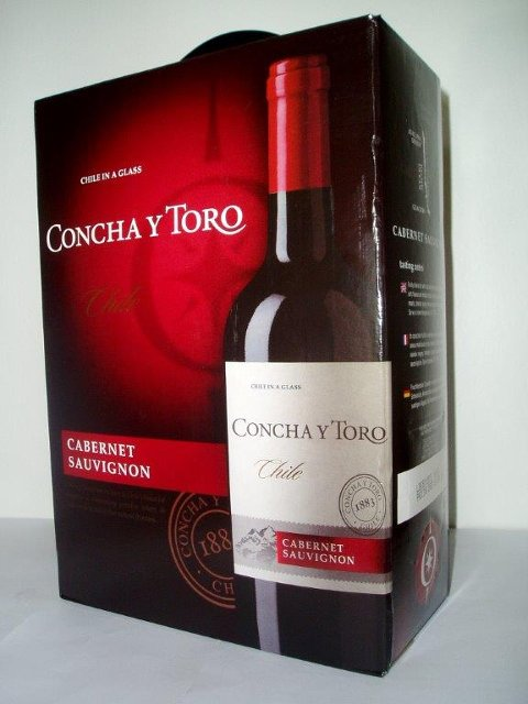 Concha Y Toro, Central Valley, Chile (Fins overalt i Telemark)