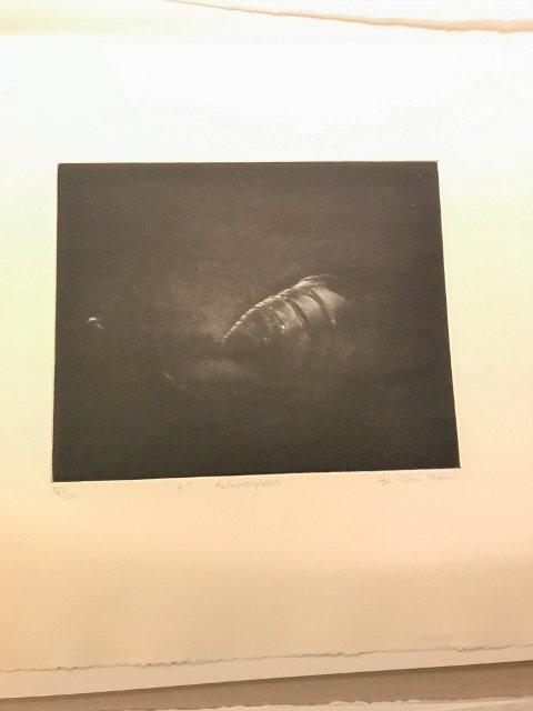 """STJÅLET: Dette litografiet, """"Metamorphosis"""" av kunstneren Hege Cathrine Thoresen, var ett av de tre litografiene posttyven fikk tak i, etter å ha stjålet en hentelapp i postkassa."""