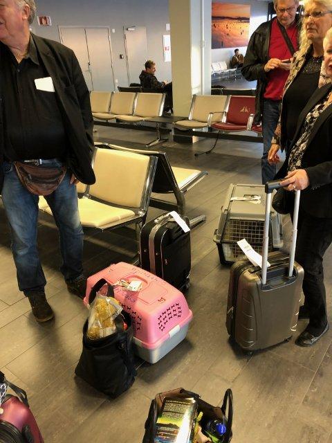 FRUSTRERTE: Passasjerene som skulle til Alicante.
