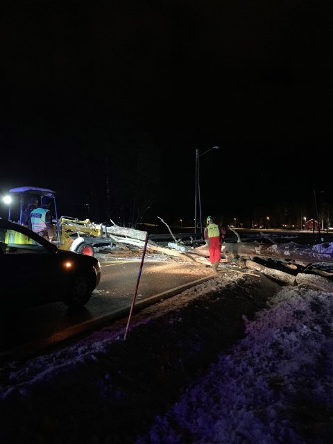 Politiet fikk hjelp til å fjerne et tre som sperret Melsomvikveien i natt