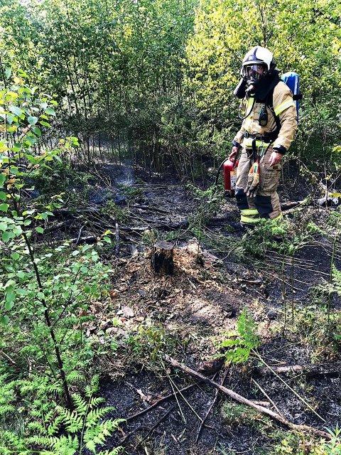 TAKKER TIPSER: – Først vil jeg berømme innringer til 110, han var på tur med hunden da han oppdaget brann ved stien midt inne i skogen, sier vakthavende brannsjef Hedon Gibbons.
