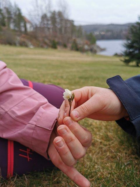Denne hvitveisen fant Julie og Solveig på Songe fredag. Privat foto