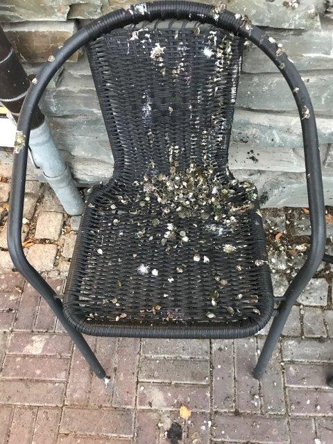 Denne stolen er griset ned av fugleskitt.