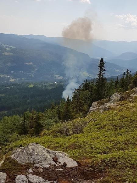 I juni brant det i Etnedal, sannsynlig brannårsak var lynnedslag.  Foto:Bodil Nysveen