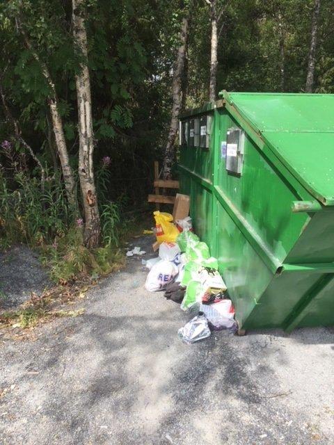 Slik så det ut da daglig leder Eivind Berg kom til stedet.. Han fikk plass til alt avfallet oppi containeren.