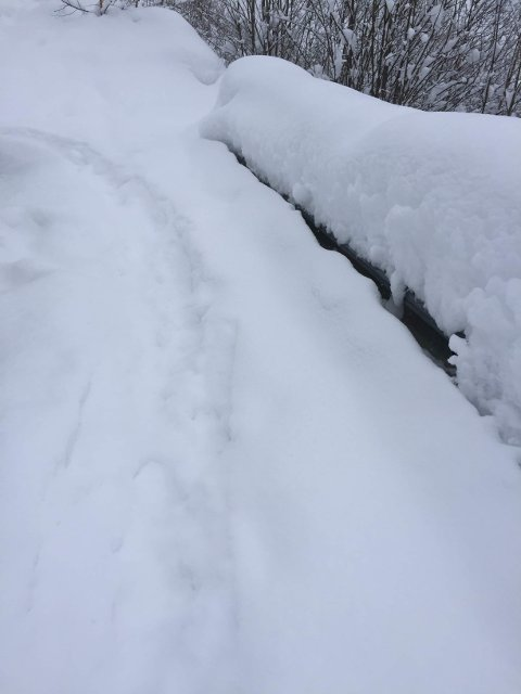 Isolerte: Når snøen legger seg er det mange eldre som ikke våger seg ut. Da kan besøk av en nabo være god medisin. (foto: privat)
