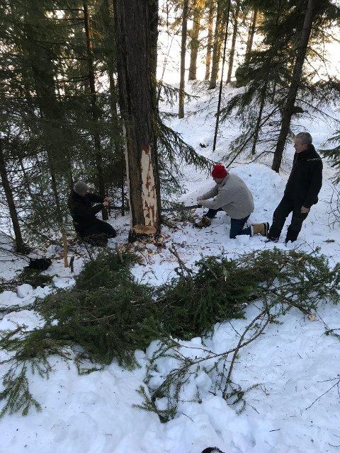 I aksjon: Denne uka skal et knippe studenter prøve seg som skogsarbeidere på tradisjonelt vis på Valdres Folkemuseum. Her fra ei tidligere samling på samme sted.