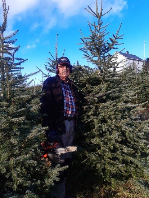 JULETREPRODUKSJON: Øyvind Magistad Berge er i gang med juletrehogsten.