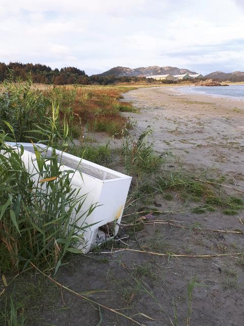 Bekymringsmeldingen til Miljødirektoratet er supplert med bilde av fryseboksen på Husebysanden.