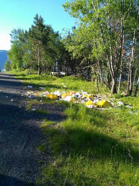 RASTEPLASS: Ved en rasteplass i Efjorden var det ikke mye trivelig å stoppe på mandag.
