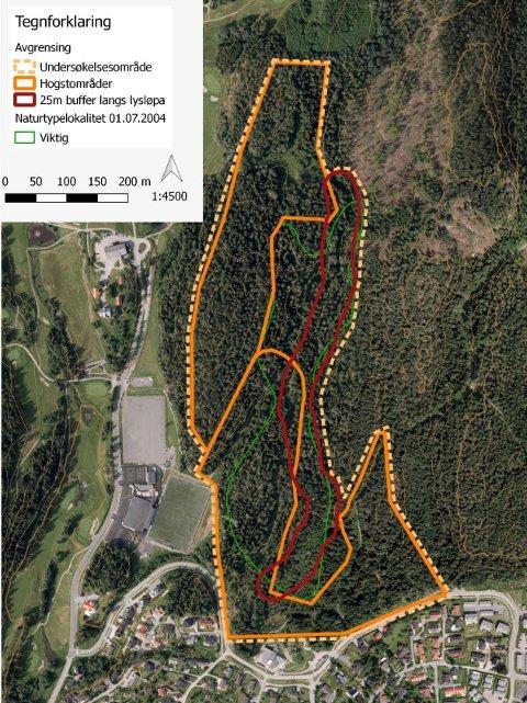 Undersøkelsesområdet(stiplet) på Østre Greverud, bestående av to mulige hogstområder(i oransje) PS. Den røde linjen(lysløypa) er lagt feil på bildet.