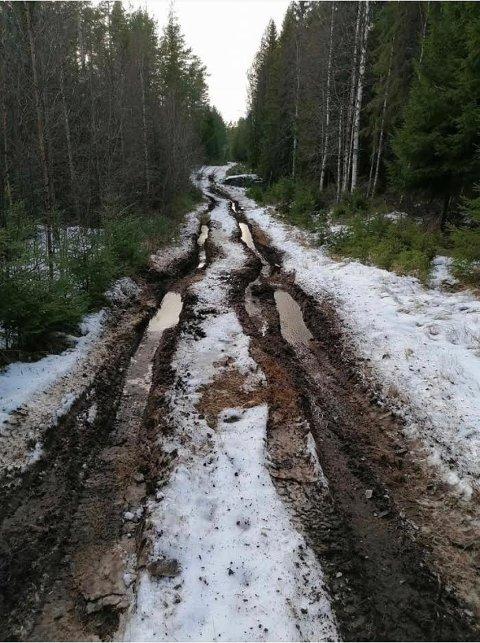ILLE:  Det er dype spor i løypetraseen etter at noen har begått motorisert hærverk på en strekning.