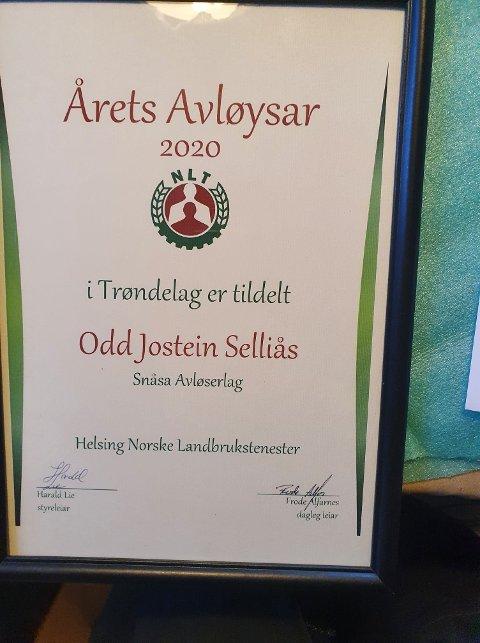 Diplom: Diplom som det synlige beviset på at Odd Jostein Selliås ble kåret til årets avløser i Trøndelag 2020.