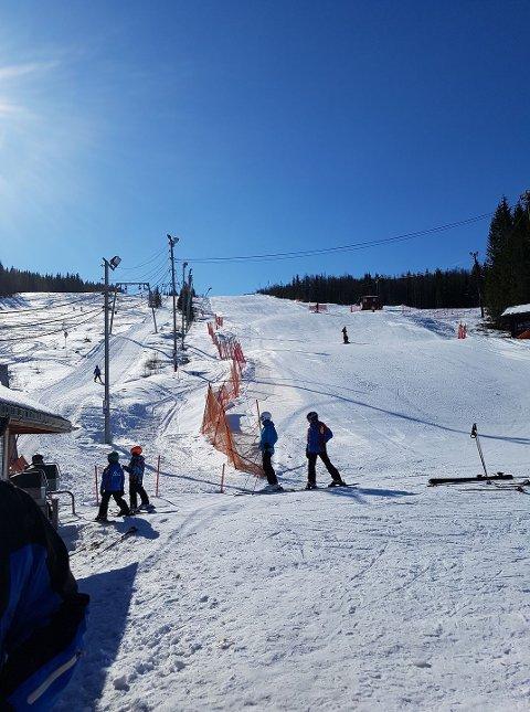Alpinanlegget på Ankenes. Heis 1 på bildet har vært i drift denne sesongen, men ikke Heis 2, øversts i anlegget.