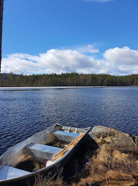 GODT FISKE: Det er fisket ut mye småfisk fra Gransjøen på Åsnes Finnskog, og nå fristes det med abbor på rundt kiloen.
