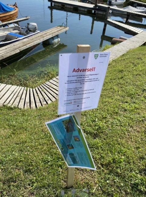 ADVARER: I Østre Toten kommune er det satt opp advarsler mot å bade i områder hvor det er avdekket oppblomstring av alger.