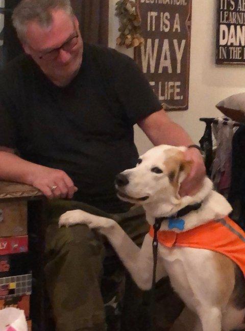 Eier Bent Arne Hansen og hunden Whisky er gode venner. Nå håper Hansen at flere vil hjelpe til med å lete etter kompisen.