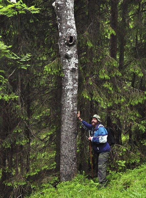 UT PÅ TUR: Sverre M. Fjeldstad er fremdeles aktiv i Østmarka. Her fra en tur på Strusåsen i 2013. Bildet er hentet fra boka «Hyllest til Østmarka».FOTO: Gjermund Andersen