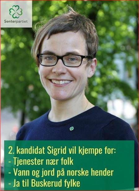 Stemte for: Sigrid Simensen Ilsøy stemte for å flytte revisjonsjobben ut av Valdres og Hallingdal.